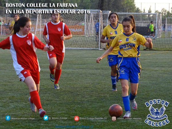 Futbolito en Cuartos de Final